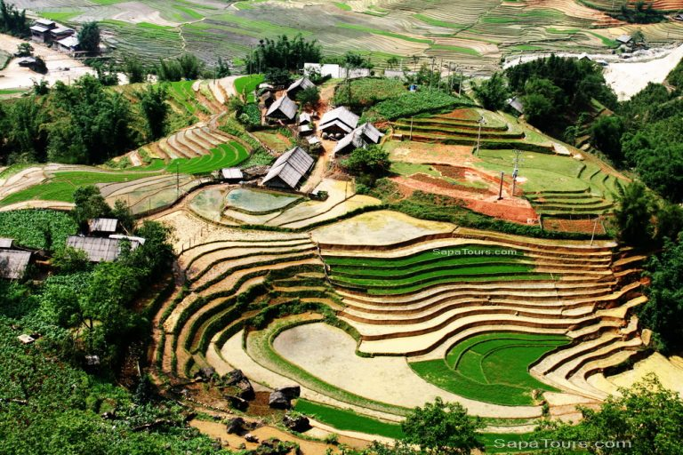 Sapa_laochai_village-view-768x512